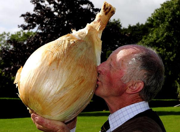 L'oignon le plus grand du monde dans Top 14 des choses insolites les plus grosses du monde